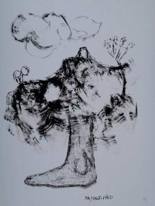 PAYSAGE-PIED  64 x 50 cm - encre